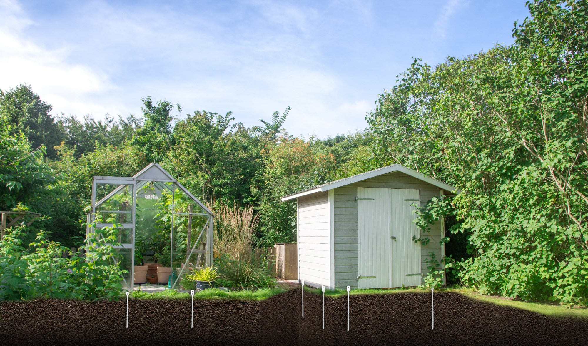 greenhouse_and_shed.jpg